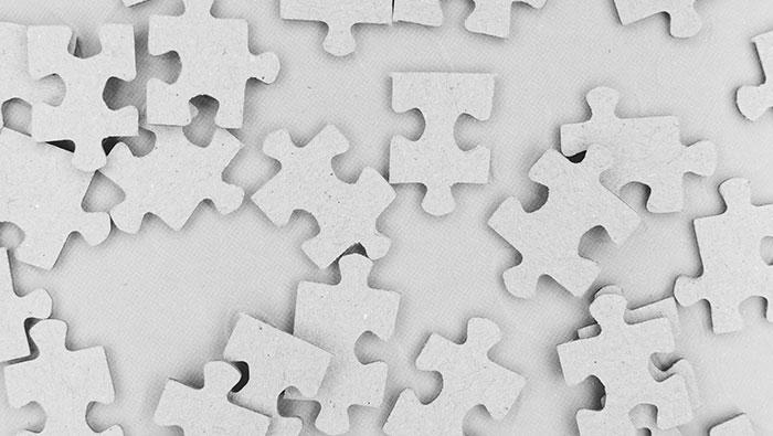 Understanding the Food Fraud Puzzle