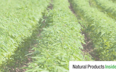 Tom Jonaitis Quoted in Natural Products Insider Article on GRAS and NDI Pathways for CBD Products