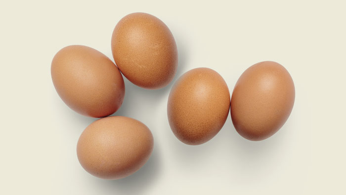 New USDA FSIS Requirements for Shell Eggs – Top 5 Things You Need to Know Now!