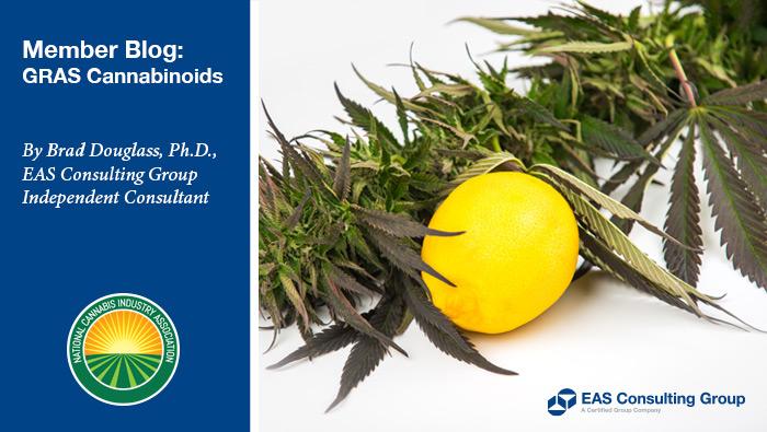 Brad Douglass Blogs for NCIA on GRAS for Cannabinoids