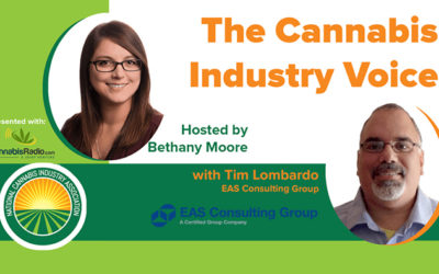 Tim Lombardo Discusses Food Safety for CBD Infused Edibles in NCIA Podcast